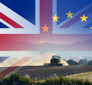 UK EU farming