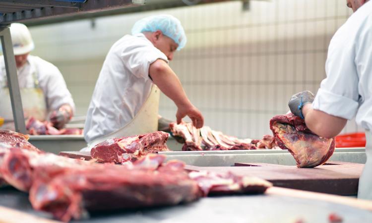 CFIA revokes three major Canadian slaughterhouse licenses