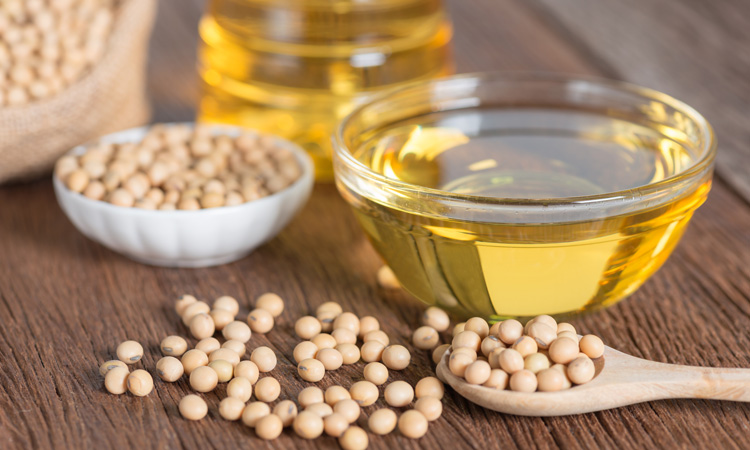 Soybean oil causes genetic changes in the brain, according to research