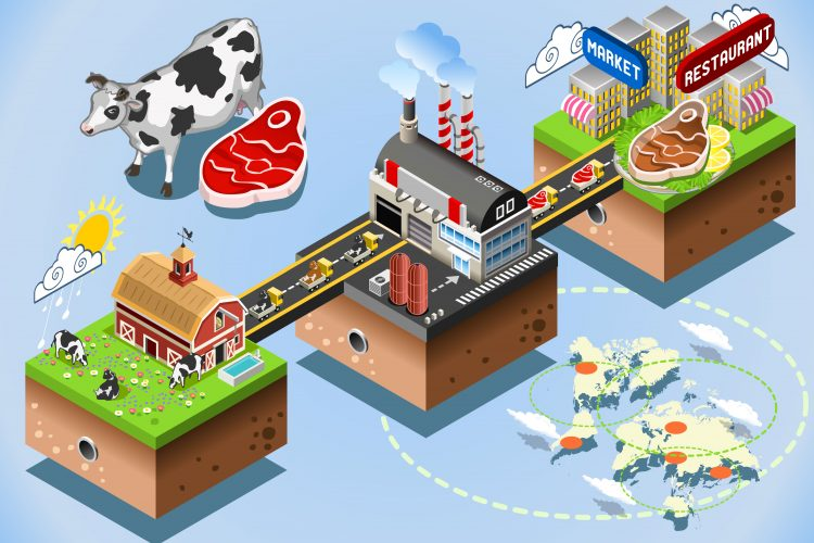 Cattle supply chain journey