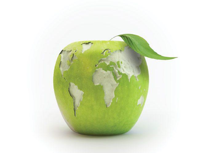 sustainability5