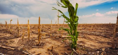 Seven sustainability trends that should worry the food industry