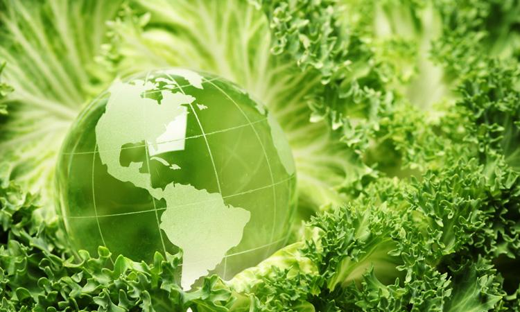 """Foundation establishes """"world's largest"""" $1 million sustainable food prizes"""