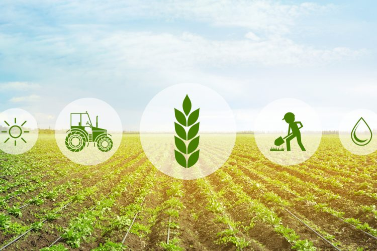 FoodDrinkEurope publishes paper on the path to sustainable food systems